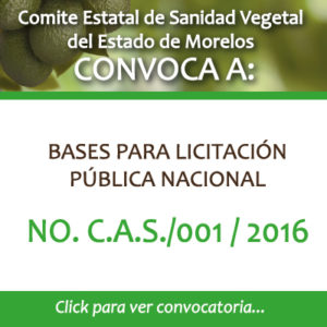 CAS-001-2016
