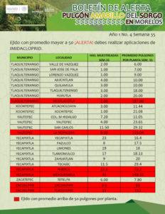 boletin-sem-34-51