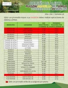 boletin-sem-38-4